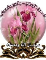 sayed hossain